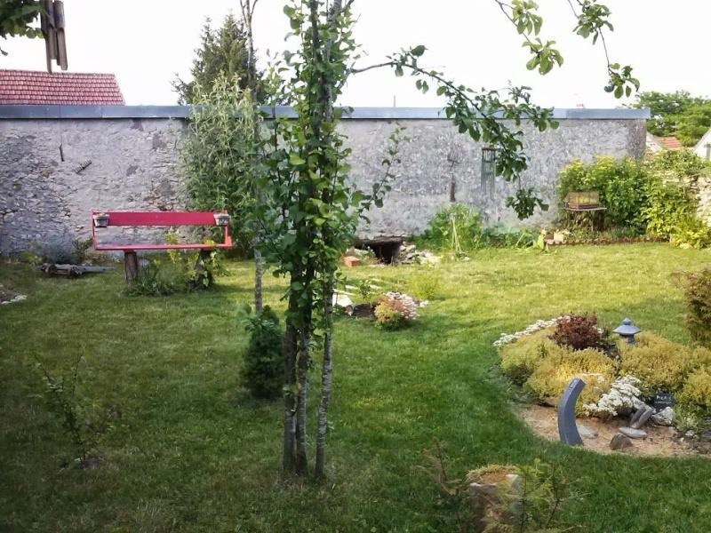 mon ptit jardin - Page 2 10699810