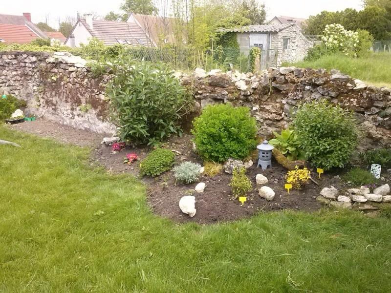 mon ptit jardin - Page 2 Cam00210