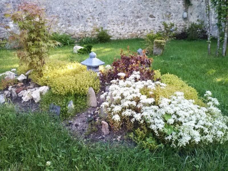 mon ptit jardin - Page 2 Cam00411