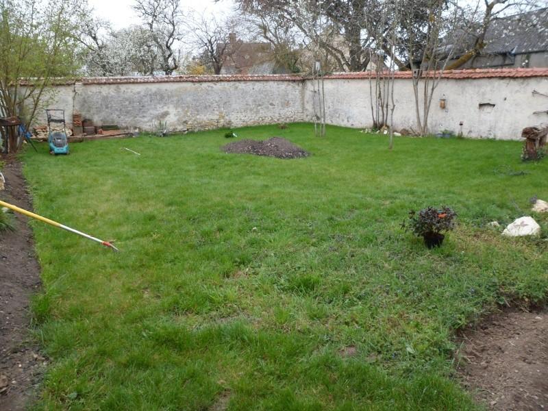 mon ptit jardin Jardin10