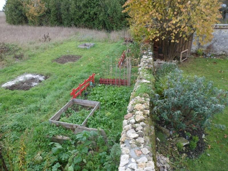 mon ptit jardin - Page 2 Sam_4010