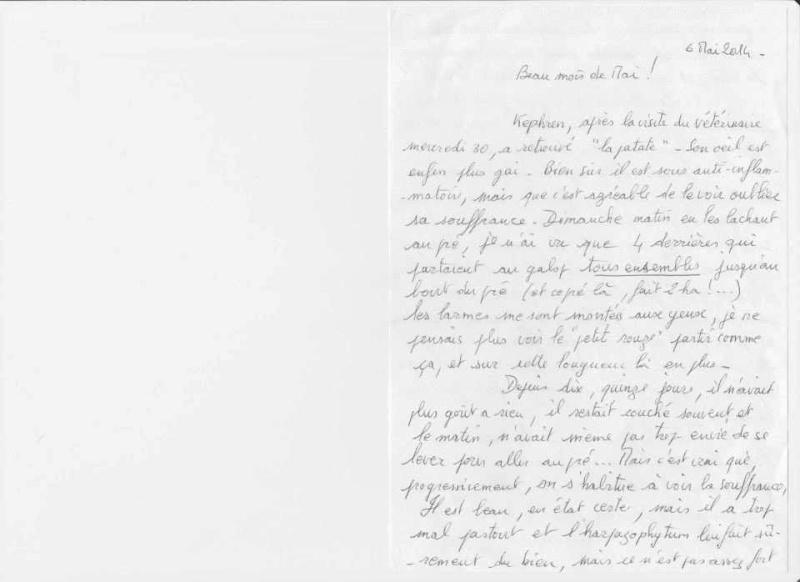 KEPHREN - ONC Selle présumé né en 1993 - Protégé GPLV - Page 5 10255810