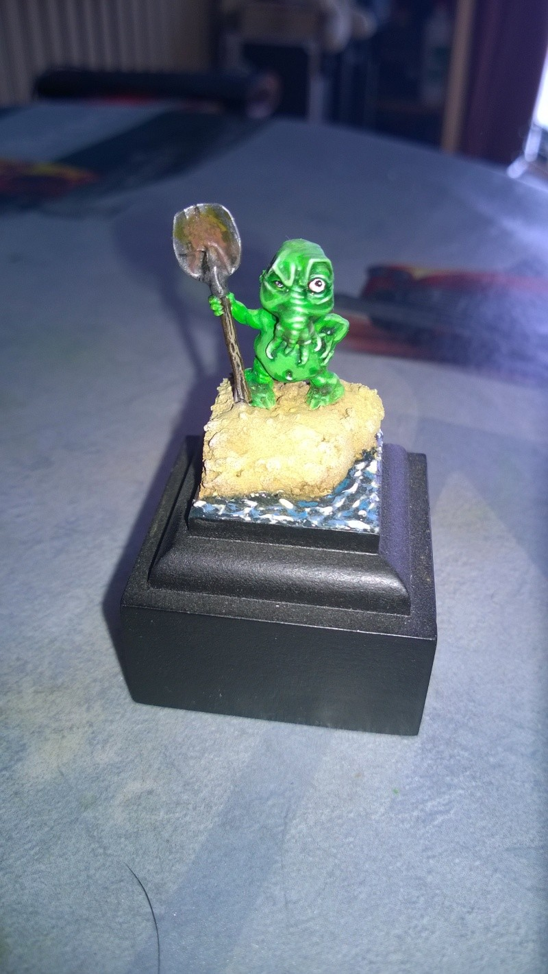 Mon autre hobby avant la Z Wp_20121
