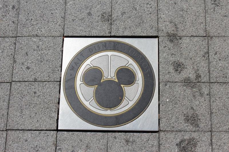 Hidden Mickey 10511