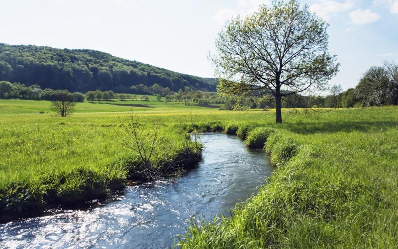 Der glitzernde Fluss Der_fl10