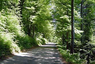 Der verlassene Donnerweg Verlas10