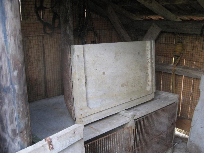 Présentation de l'élevage de Boris54  Installations fini  !  - Page 14 Img_2912