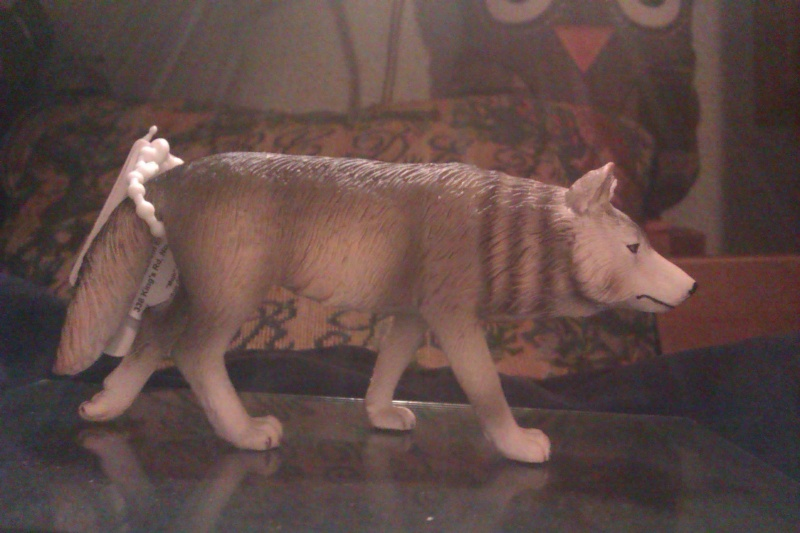 Hunting wolf, my First Mojo Fun figure! Imag5411