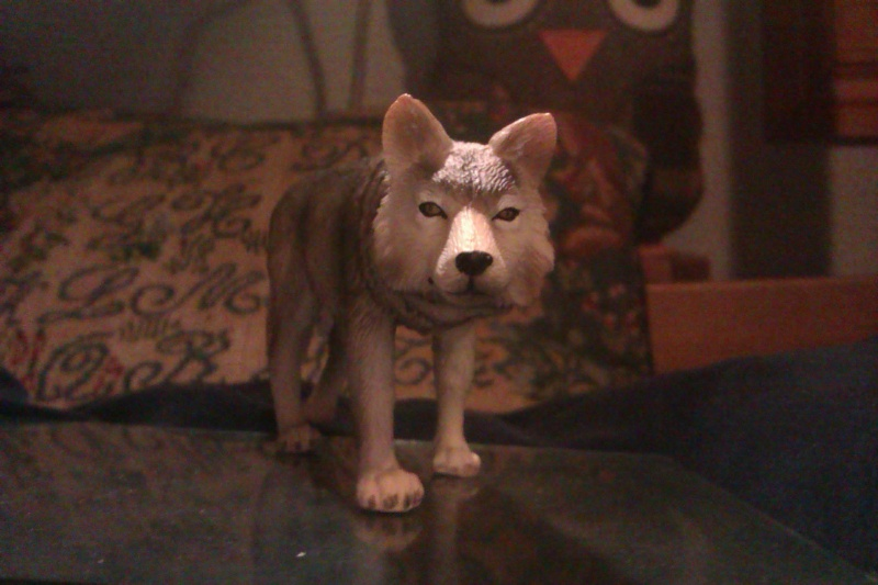 Hunting wolf, my First Mojo Fun figure! Imag5412