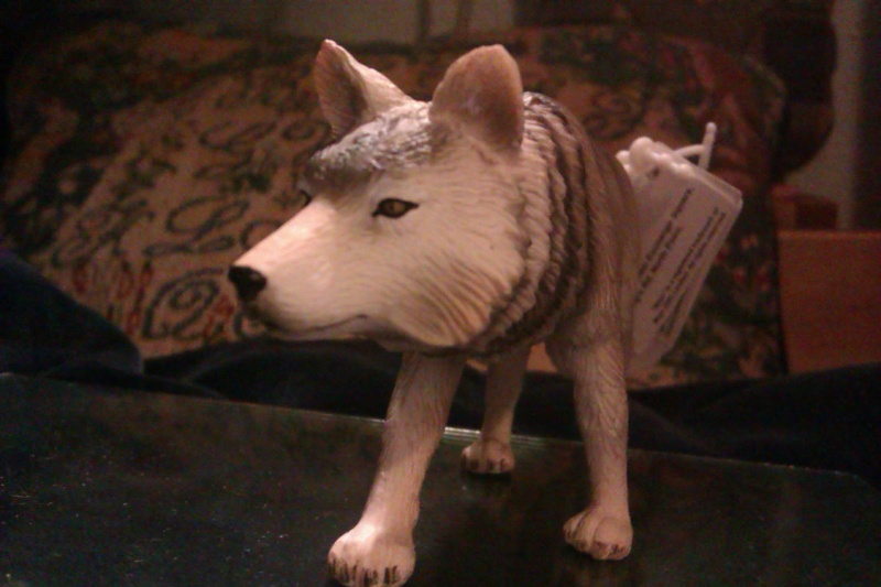 Hunting wolf, my First Mojo Fun figure! Imag5413
