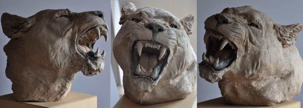 Têtes de lions - Page 2 Fs112