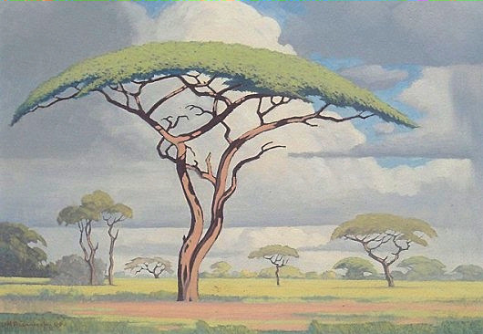 The Baobab by Pierneef Jhpier10