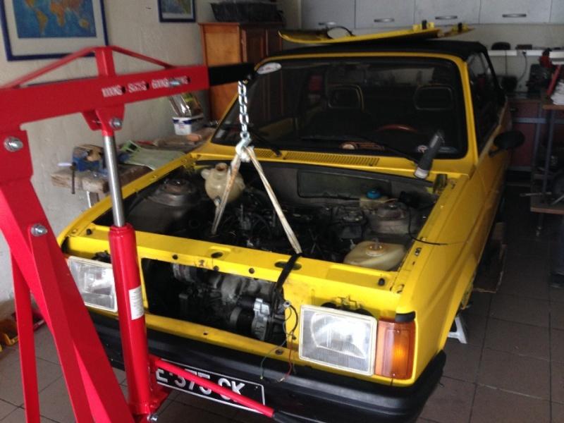 restauration partie moteur _natur10