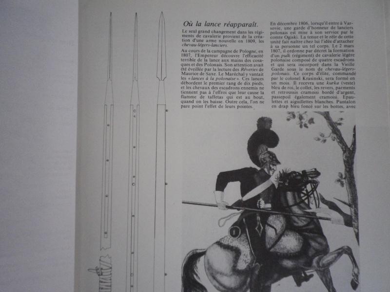 Les pics de lance sous l'empire Imgp4915