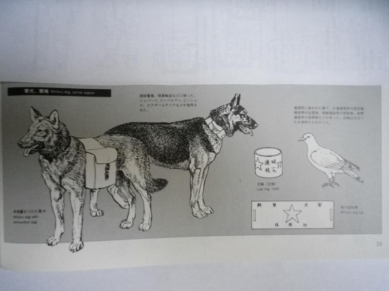 Animal de guerre. Imgp5129