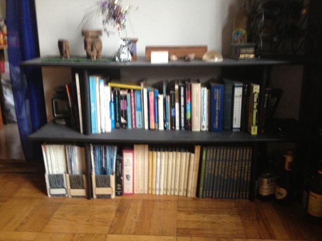 Books! - Page 6 Bookca11