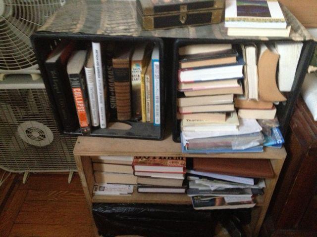 Books! - Page 6 Bookca14