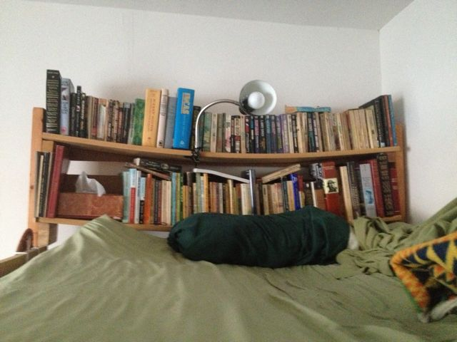 Books! - Page 6 Bookca15