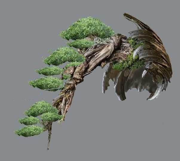 TIMO ... futuro bonsai ... Virtua10