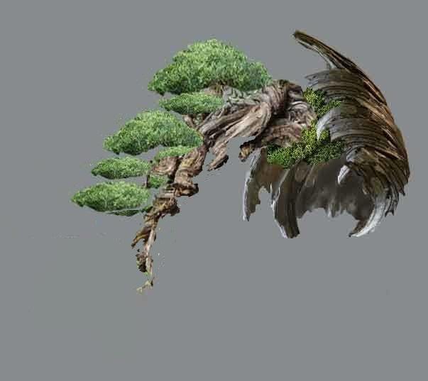 TIMO ... futuro bonsai ... Virtua11