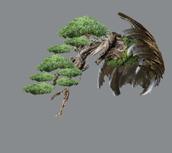 TIMO ... futuro bonsai ... Virtua14