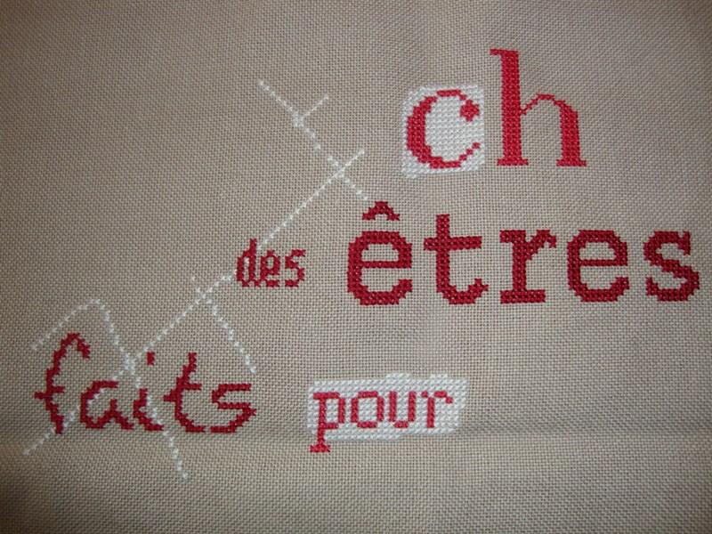 Sal LLP les chats - FINI Chats10