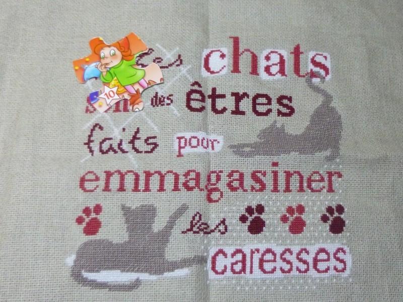 Sal LLP les chats - FINI Sal_ch44
