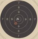 Anschutz match 54 .22lr - 50m  Img210
