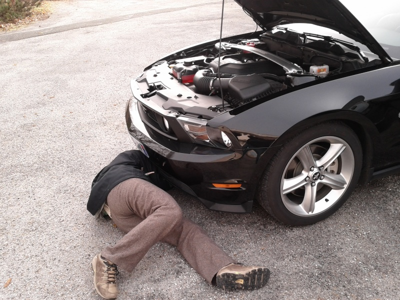 Mistigrette et son V8: une GT premium de 2011 Img_2013