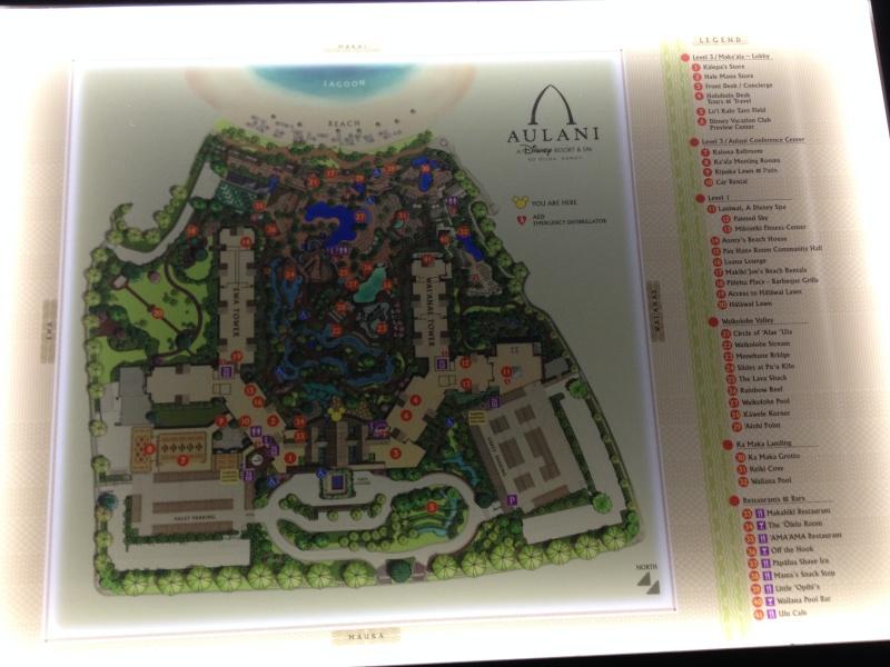 Aulani, a Disney Resort & Spa [2011] - Page 7 Img_3011