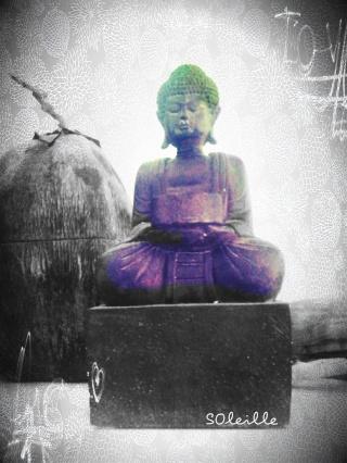 Comment allez-vous ? - Page 2 Buddha11