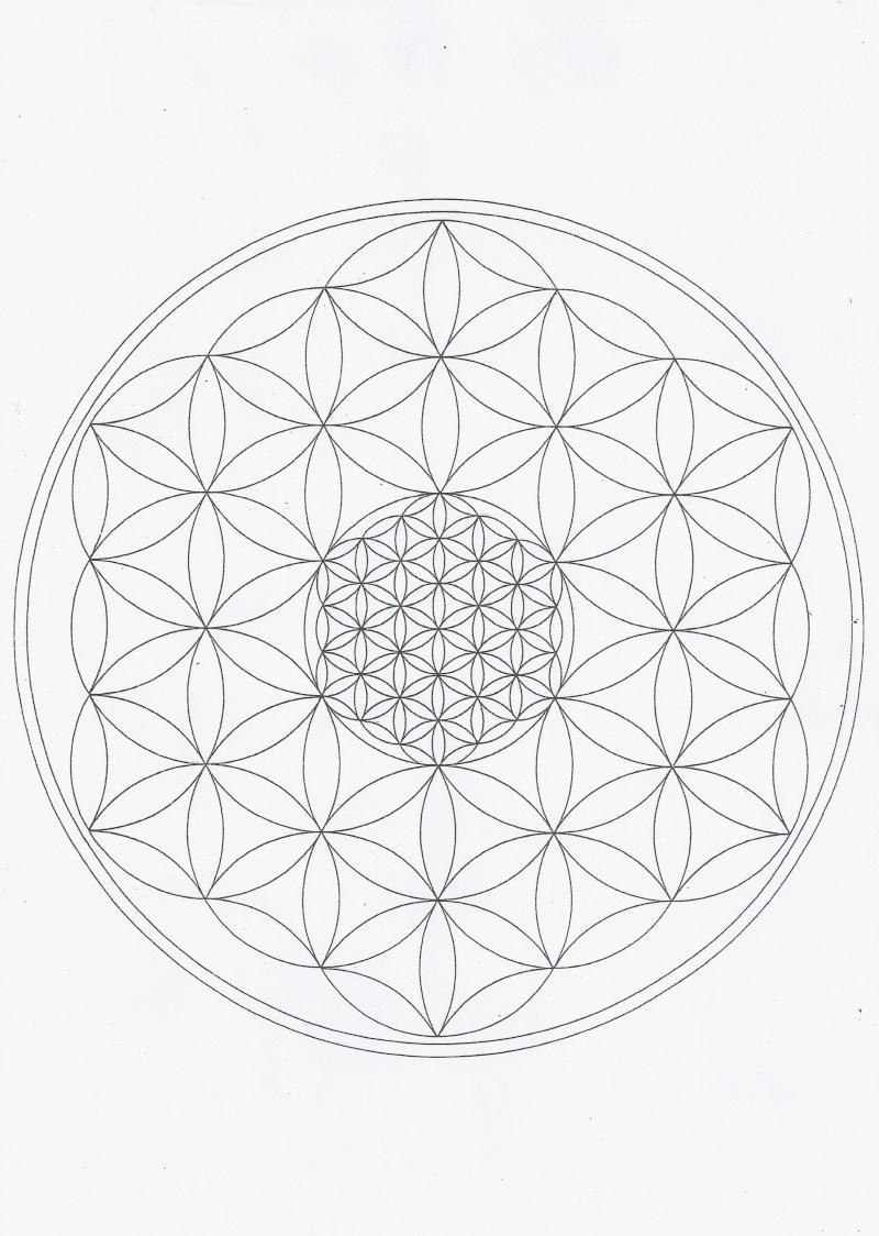 Le Secret de la FLEUR de VIE Fleur_10