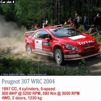 1º test de Pre-Temporada RSRBR 2016 Peugeo15