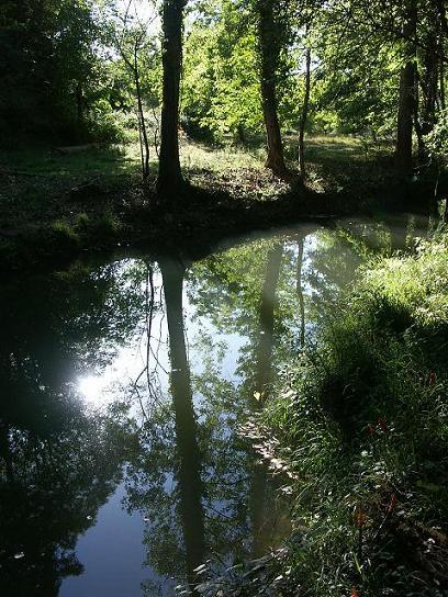 36 - Les reflets dans les flaques d'eau........ photos reçues !!! - Page 4 Pict2312