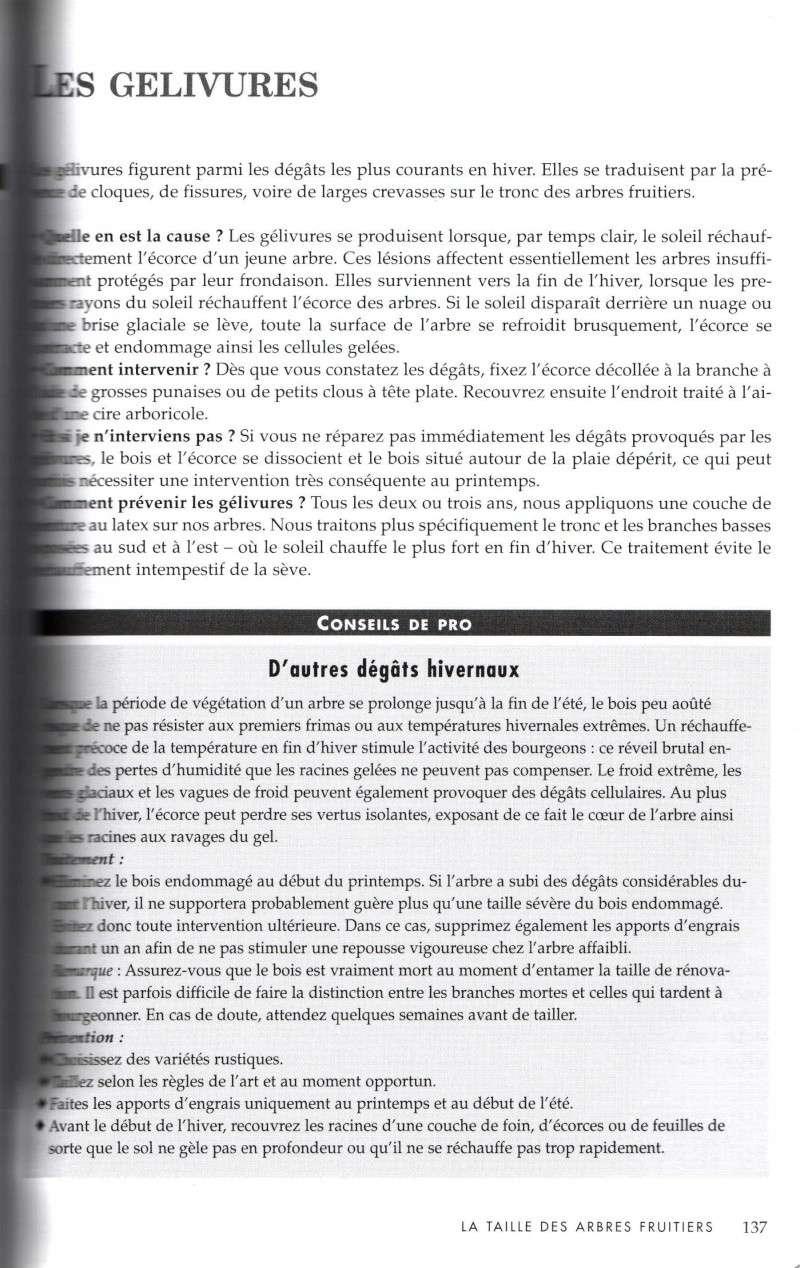 Arbres fruitiers à rajeunir - Page 2 1111