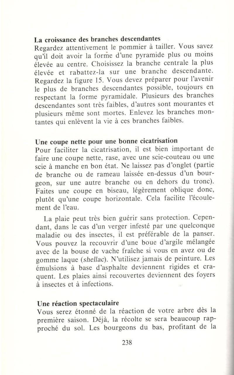 Arbres fruitiers à rajeunir - Page 2 1210