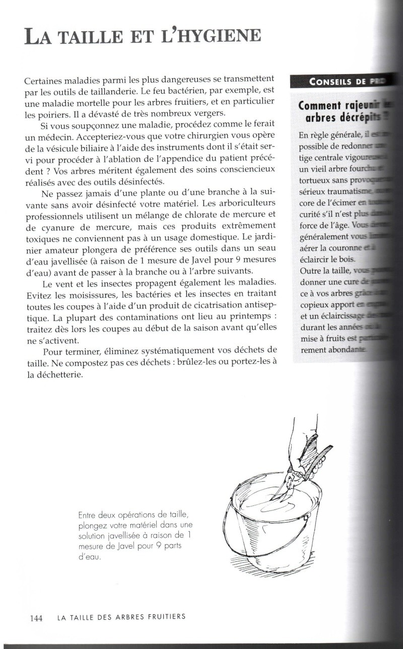 Arbres fruitiers à rajeunir - Page 2 1411