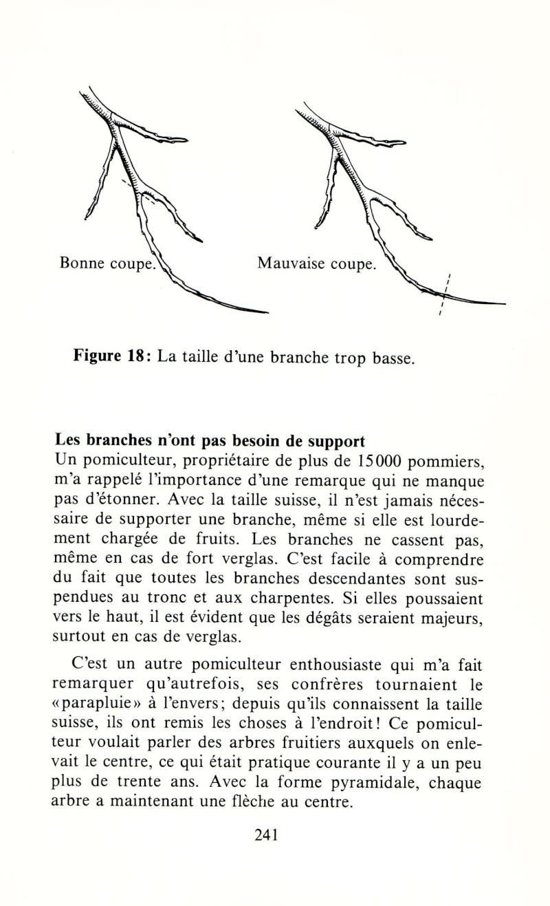 Arbres fruitiers à rajeunir - Page 2 1510