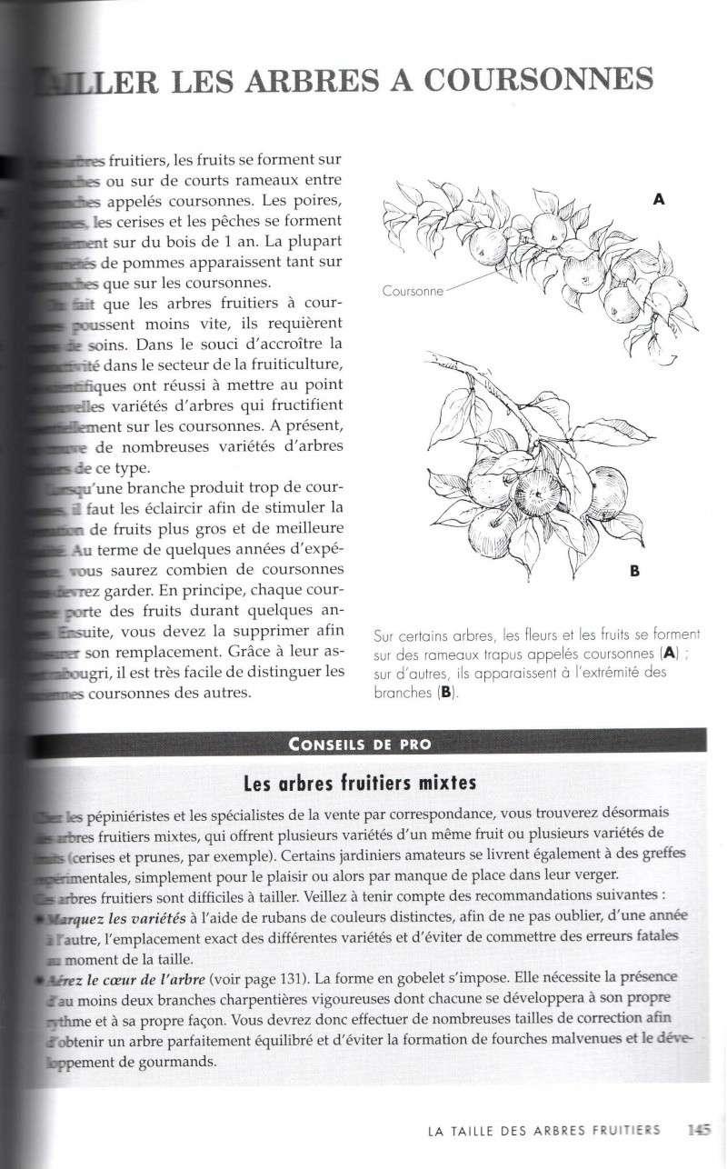 Arbres fruitiers à rajeunir - Page 2 1511