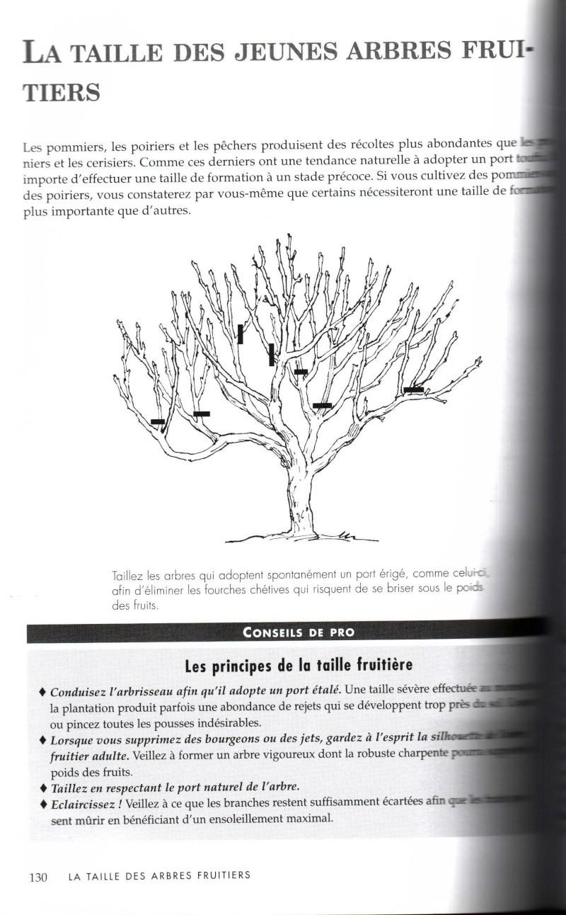Arbres fruitiers à rajeunir - Page 2 413