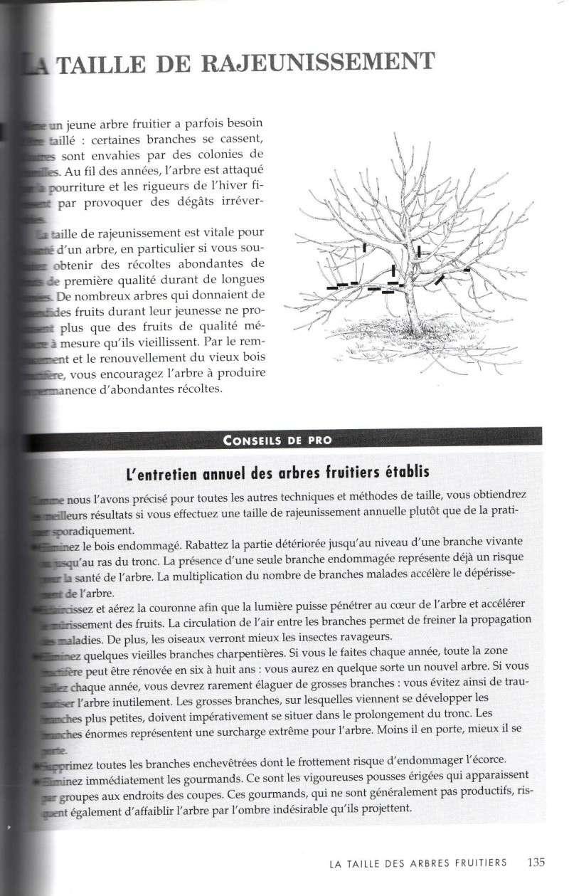 Arbres fruitiers à rajeunir - Page 2 911
