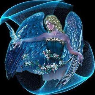 J'aperçois des anges par là Ange310