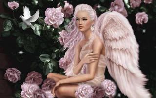 J'aperçois des anges par là Angee10