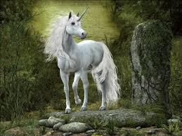 Les licornes Astreb10