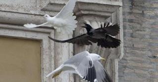 Le corbeau Ukrain10