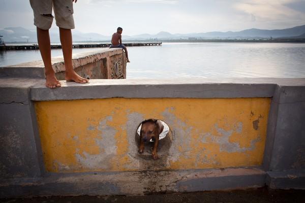 Un año despues:  Los efectos latentes del huracán Sandy en Cuba  Poole_24