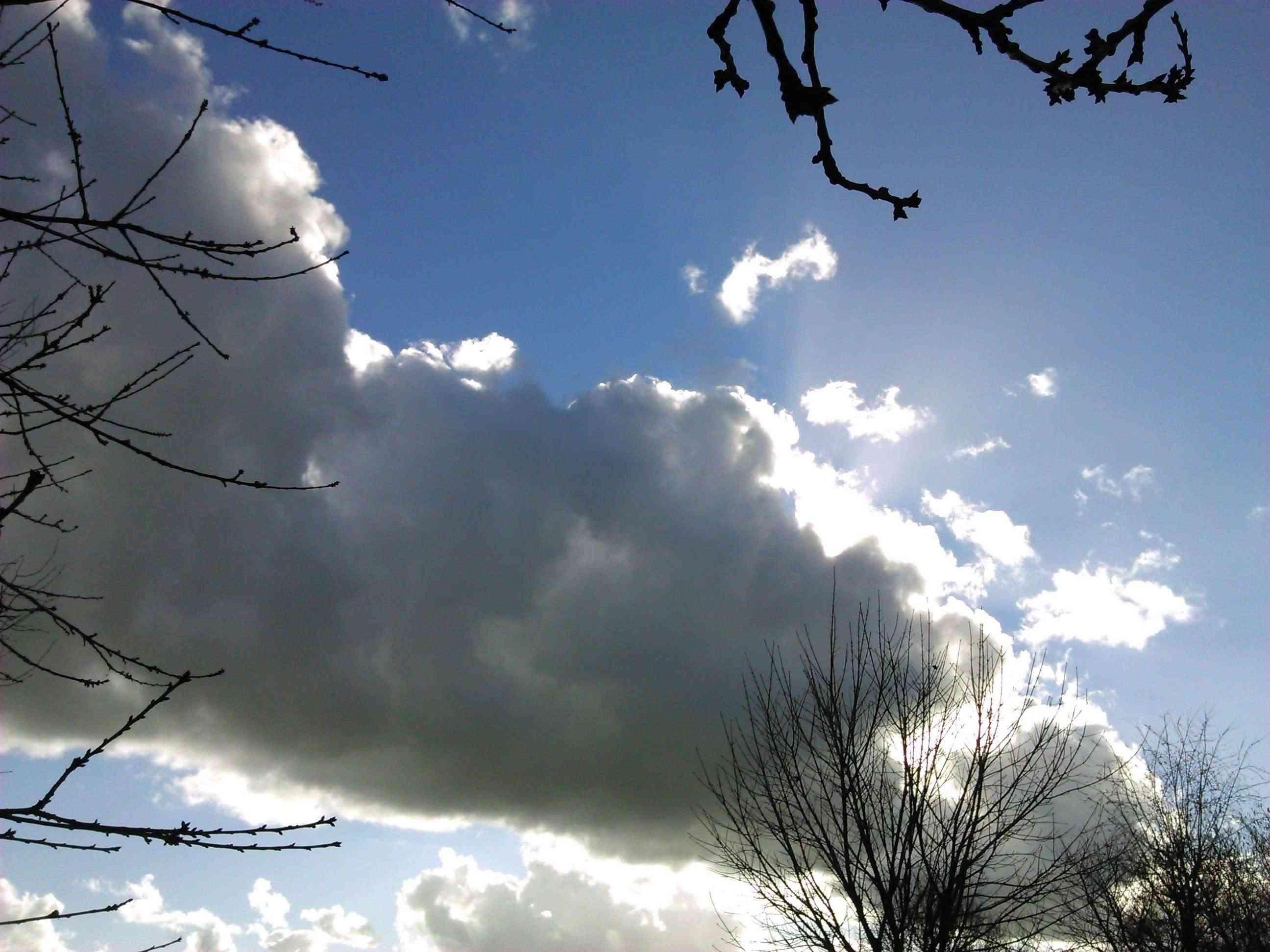 37 - Les nuages..... photos reçues  - Page 4 Dsc_0038