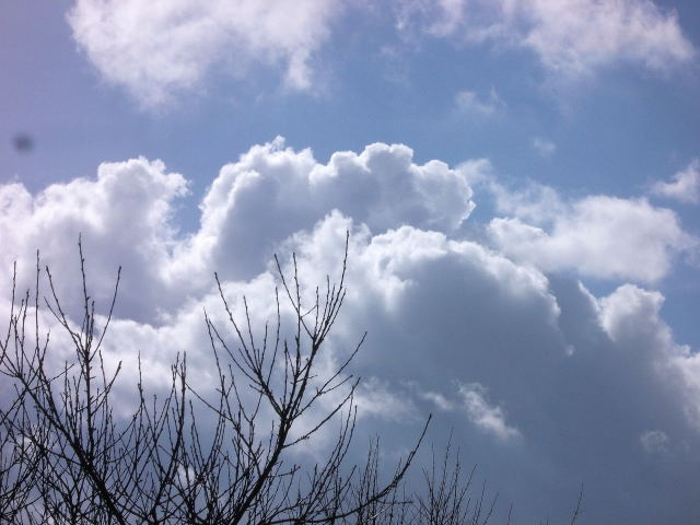 37 - Les nuages..... photos reçues  - Page 4 Dscn7101