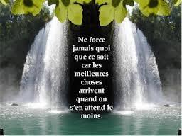 Belles citations - Page 18 Images41