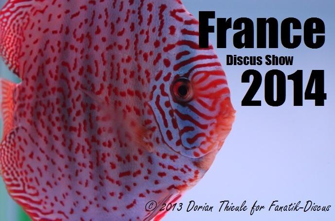 Arvert France Discus Show le 5 et 6 Avril 2014  France10